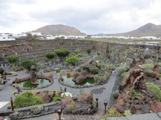 el jardin de cactus ensemble retaillé