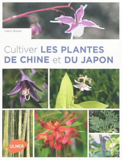 cultiver plantes de chine et du japon